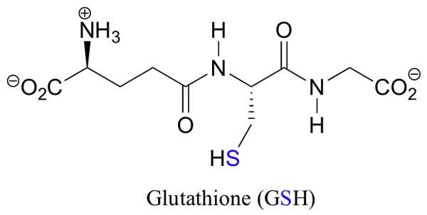 glutathione-(1)